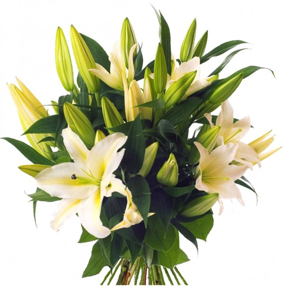 Lilly Bouquet